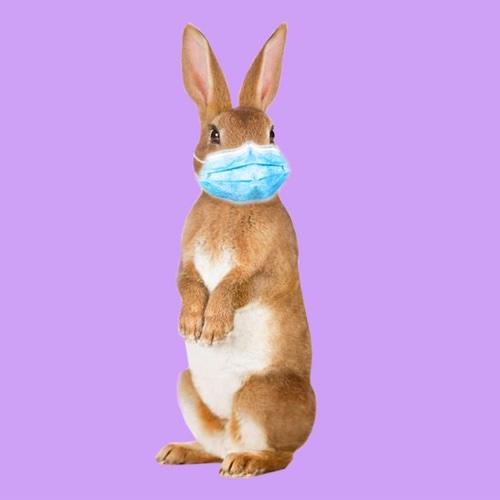 Escort Khloe Northampton Happy Easter